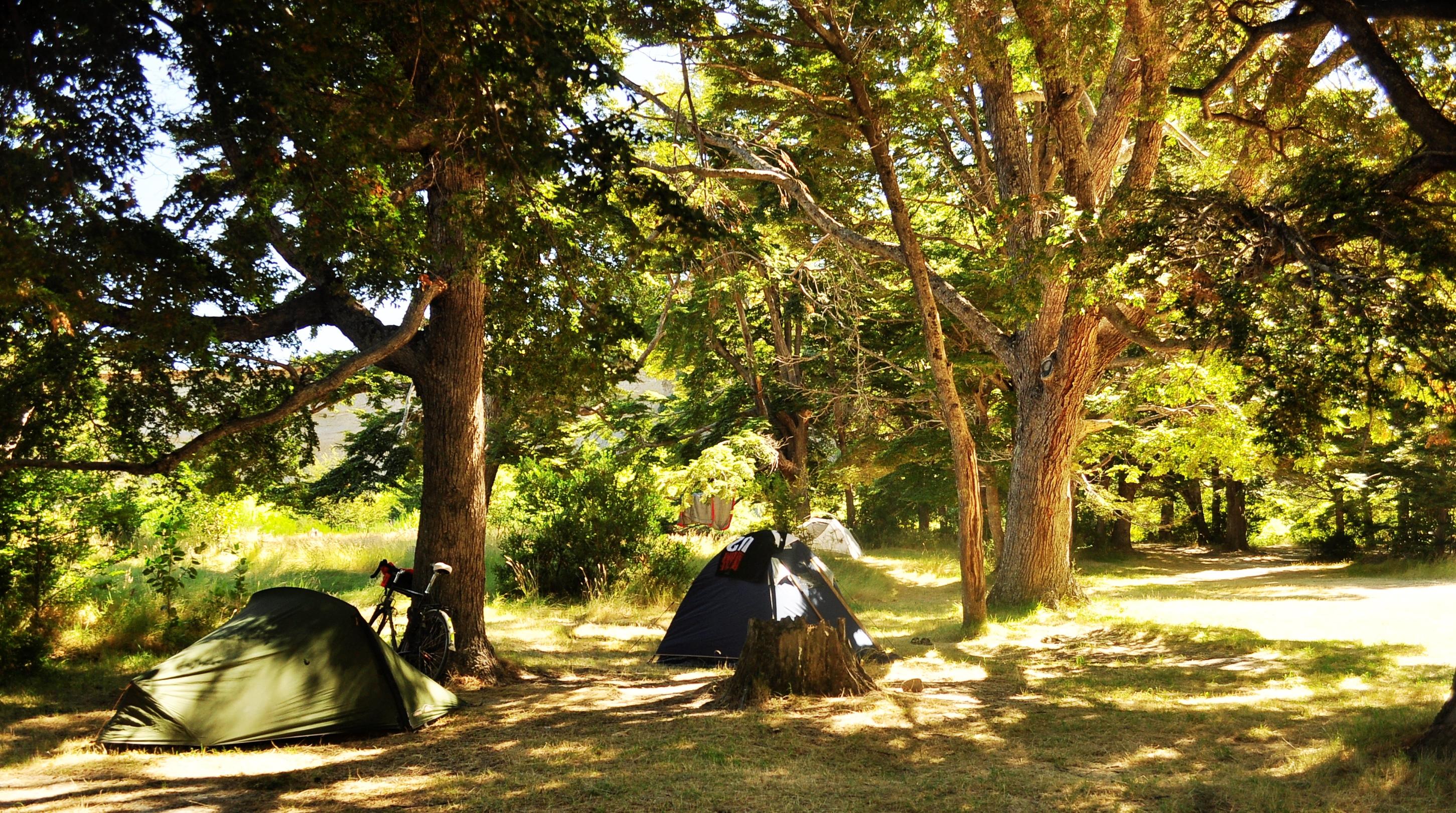 camping bosque de coihues